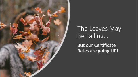 The leaves may be falling, but our Certificate Rates are going UP!