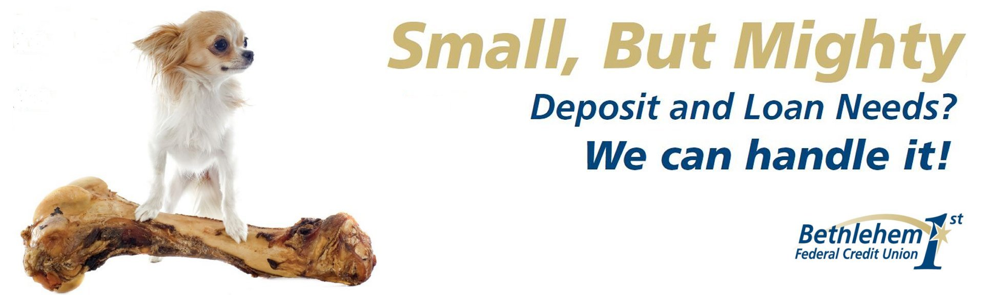 We're small, but mighty, and can handle your deposit and loan needs!