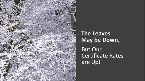 The leaves may have fallen, but our Certificate Rates are UP!