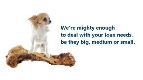 Big, Medium or Small Loans